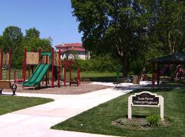 Sue-Rhynne-Playground.jpg