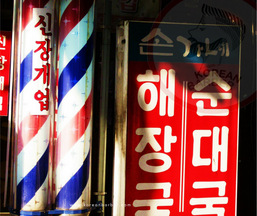 The Korean Barber Pole