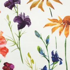 Field flowers on cream