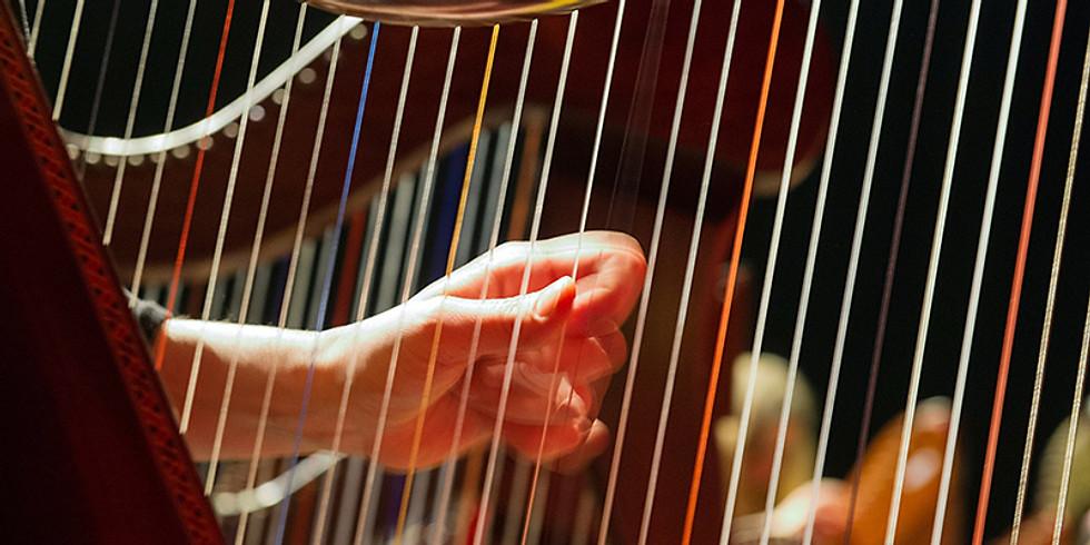 2 Harpes / 1 Voix