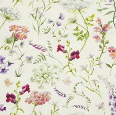 Wildflowers cream