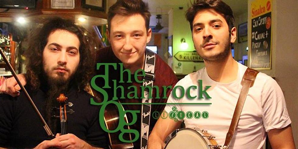 nuit celtique / the shamrock og