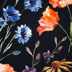 Field flowers on black