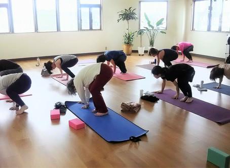 4/29(水・㊗) Yogahour+ Vol.16
