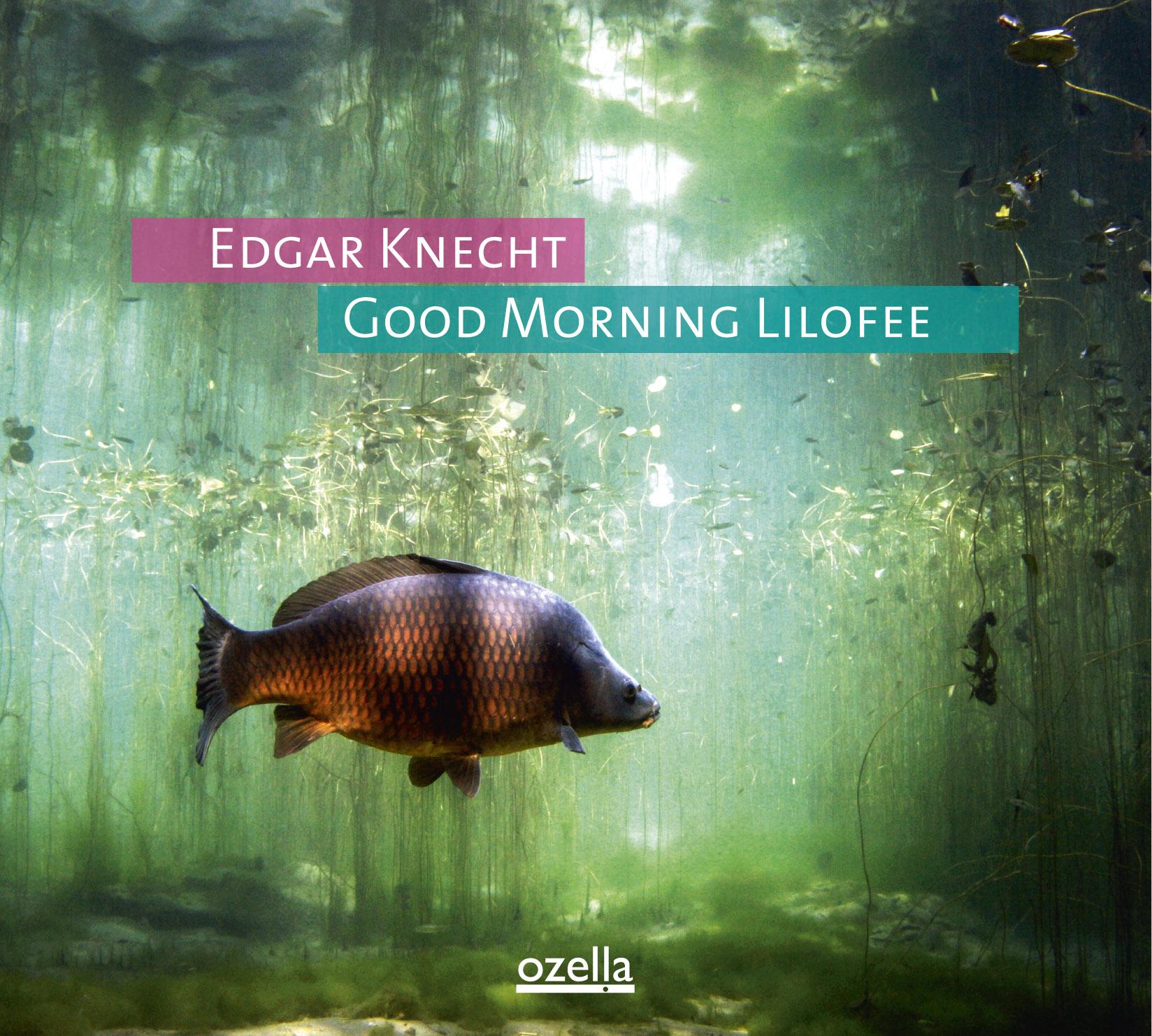 Edgar Knecht: Good Morning Lilofee
