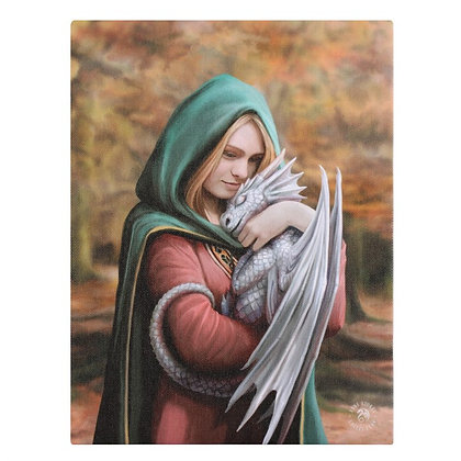 Safe Haven Dragon and Mage - Anne Stokes Canvas