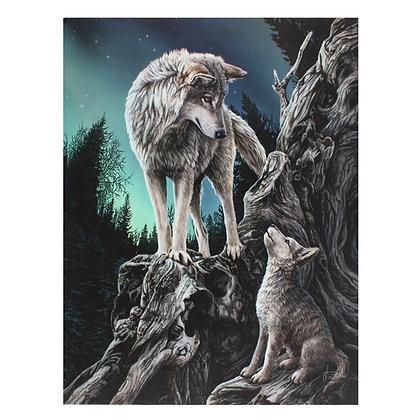 Guidance Wolf - Lisa Parker Canvas