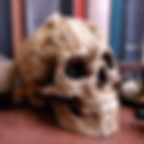 Skull Ornaments and Figurines