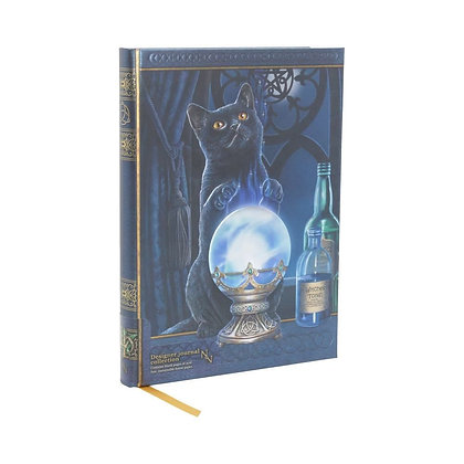 The Witches Apprentice Cat Embossed Journal - 17cm (Lisa Parker)
