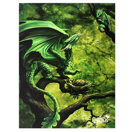Forest Dragon - Anne Stokes Canvas
