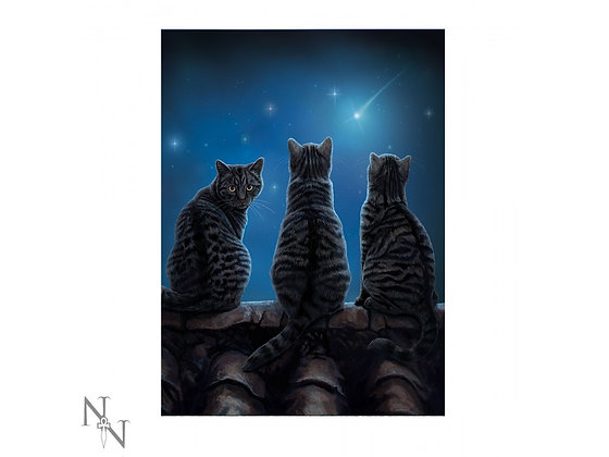 3D Picture Wish Upon a Star Cats (Lisa Parker)