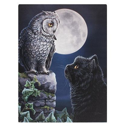 Purrfect Wisdom Cat and Owl - Lisa Parker Canvas