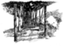 IMG_7507 2.jpg