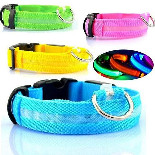 LED Pet Collars