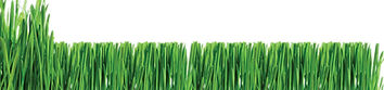 lawn-care-logos-clip-art_298013.png