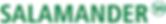 Salamander Logo 2019.png