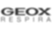 Geox Logo .png