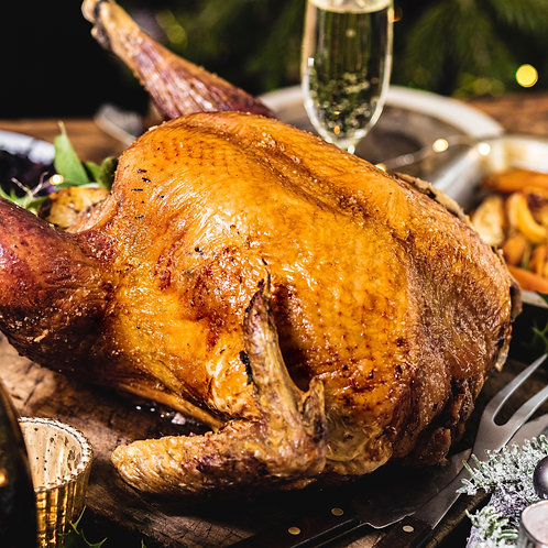 Bronze Turkey