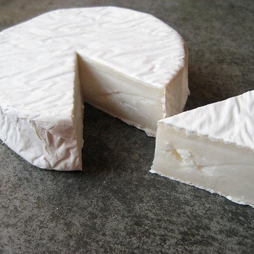 Nanny Flory Cornish Goats Brie