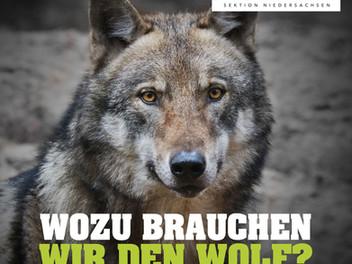 Wozu brauchen die Natur den Wolf?