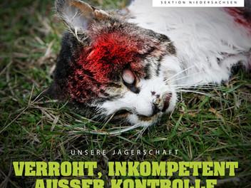 Wir fordern: Schluss mit der Jagd auf Haustiere