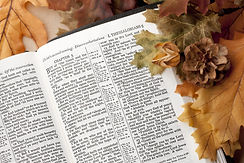 Bible - Inspired Word of God