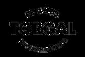 LogoTorgal-WEB.png
