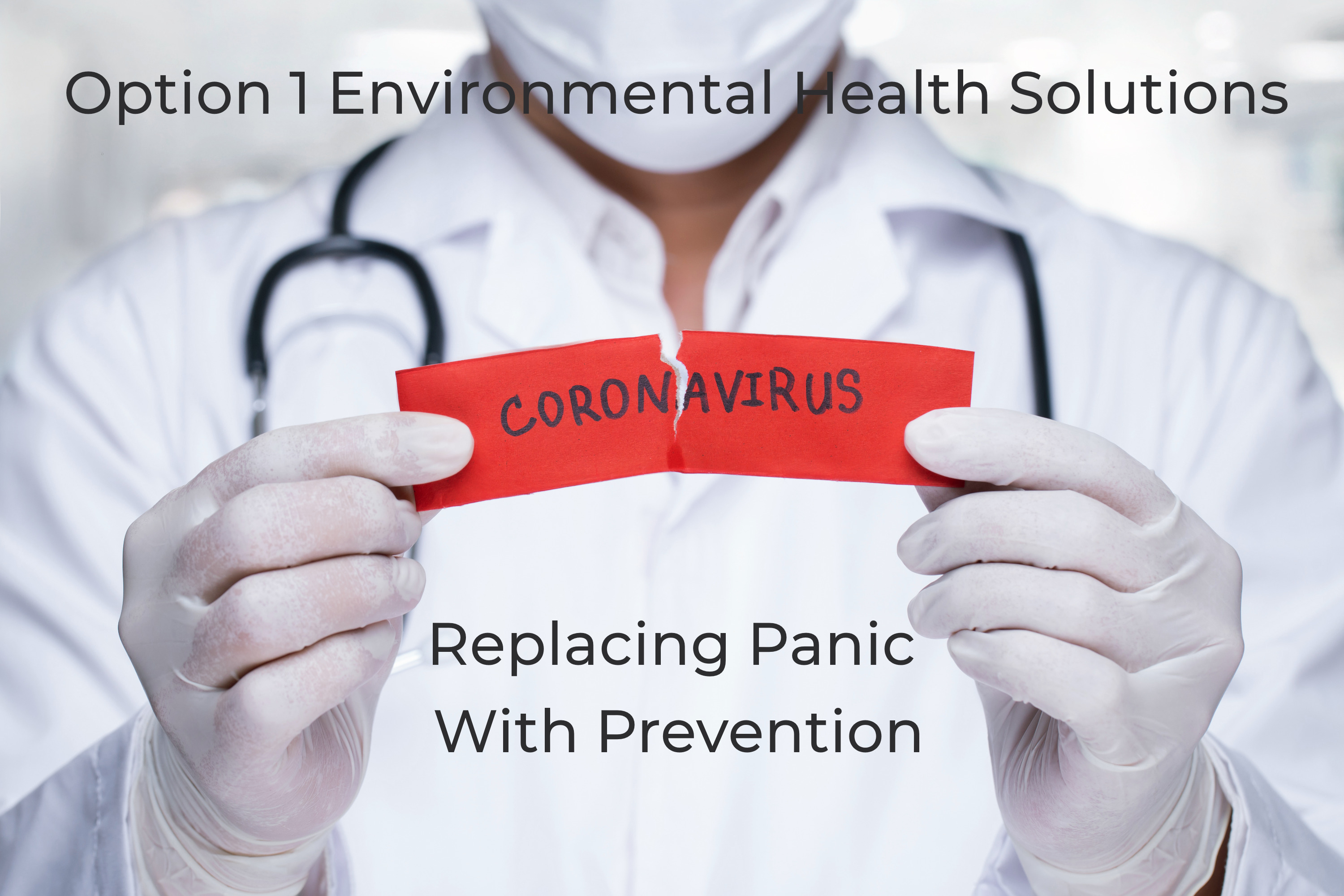 Option 1 Environmental Health Solutions