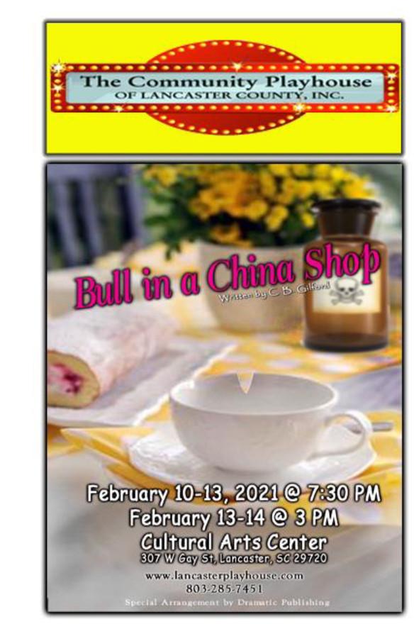 Bull in China Shop Program-1.jpg