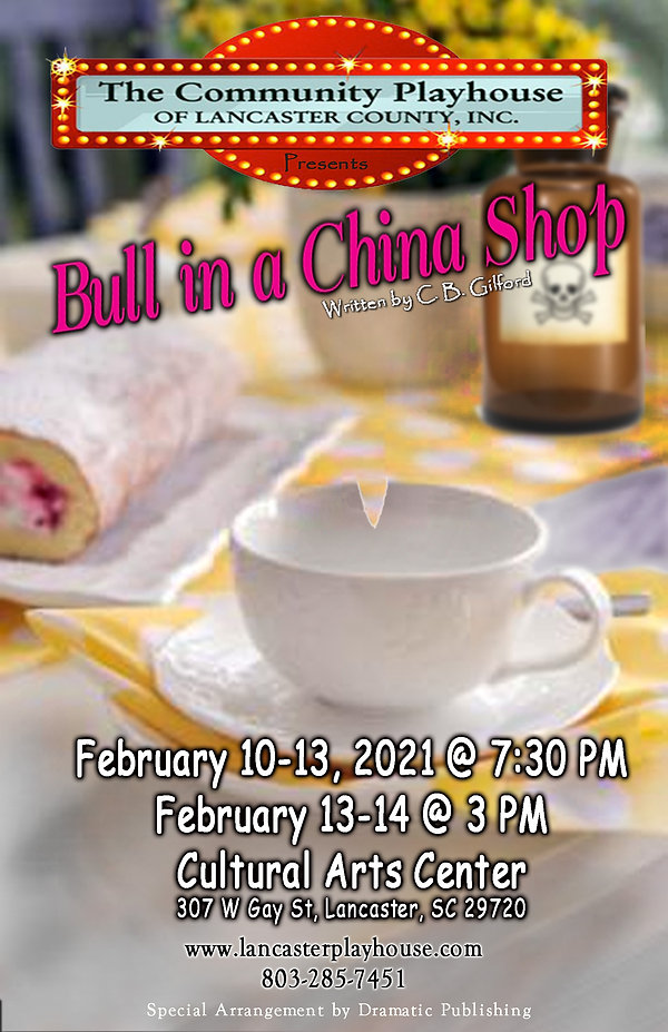 Bull in a china shop.jpg