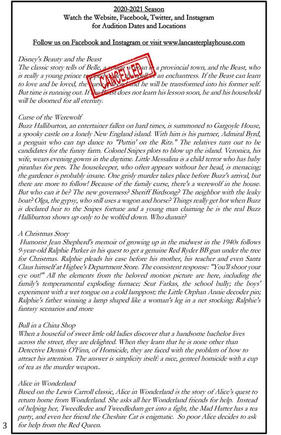 Bull in China Shop Program-4.jpg