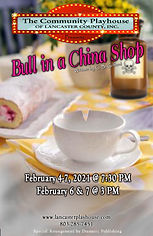 Bull in a china shop.jpg