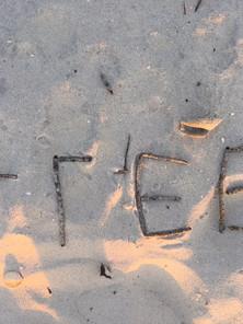 Survivor Sand Art