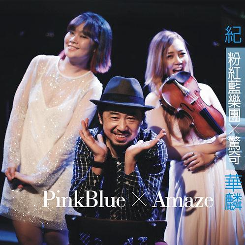 驚奇-粉紅藍樂團
