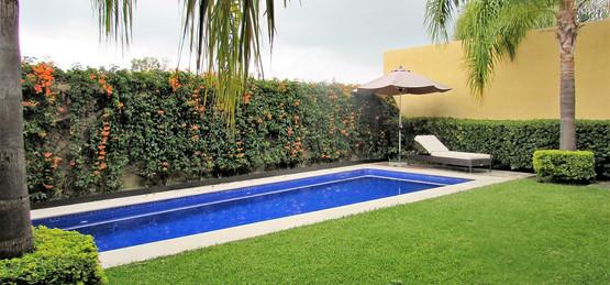 Yard with swimming pool