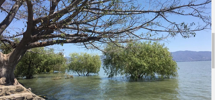 Lake Chapala front view