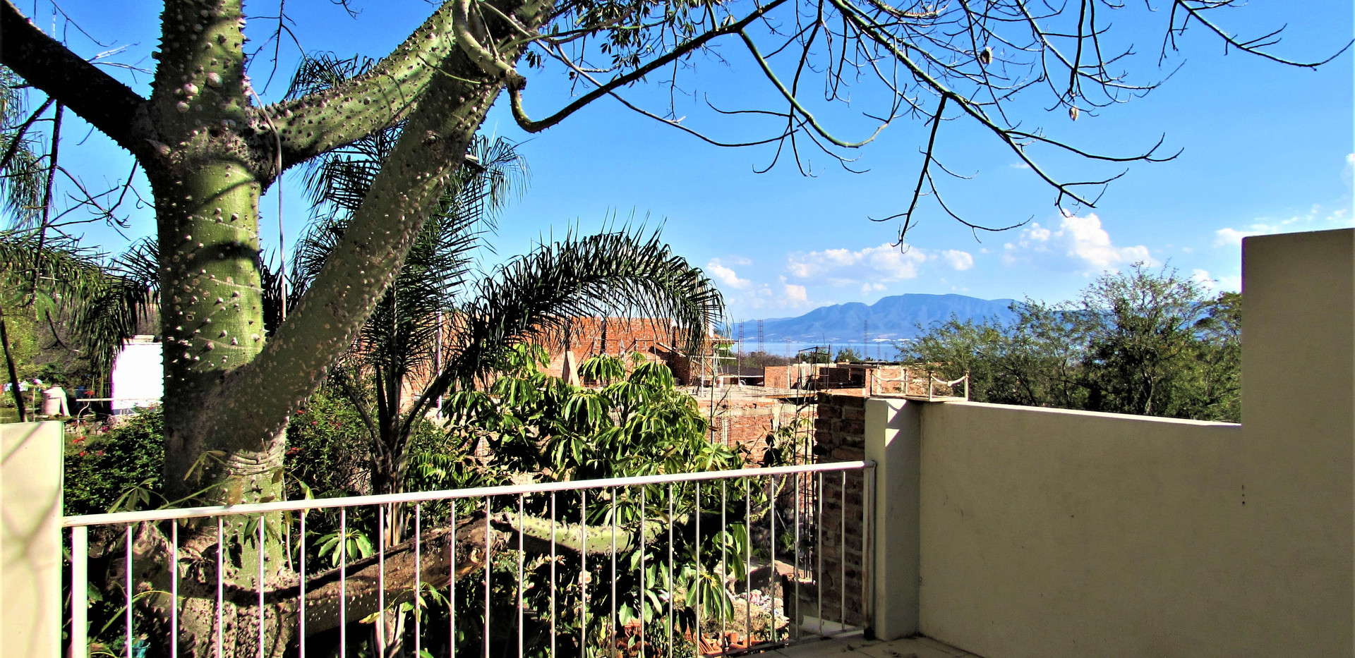 Cornejos- Back balcony