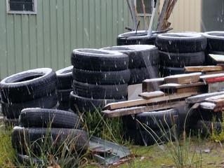 A Winter's Day in Tassie