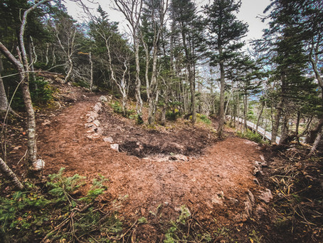 2020 Trail Building Review