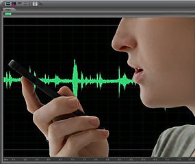 voice identification/recognition