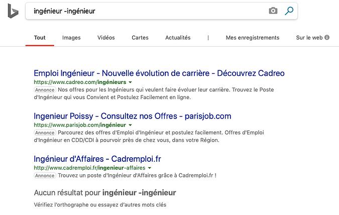 recherche bing.png