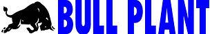 bull logo 3.jpg