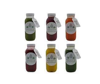 Alkaline Wellness Centre - Standard Juic