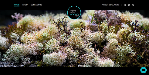All Things Sea Moss - Website by Brand S