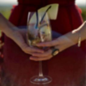 Weinaromen, family-good.de, Weine auswählen, Weinregal, bequem, nach Hause schicken, bequem online, rote Trauben, aromenstarke Weine einkaufen, Rotwein, Rosé, von Weingut Lichti, Pfalz, online bestellen, Sauvignon gris, blanc, Blauer ZweigeltWeinkeller, family-good.de, Weine auswählen, Weinregal, bequem, nach Hause schicken, bequem online aromenstarke Weine einkaufen, Rotwein, Weisswein, Rosé, Secco, von Weingut Lichti, Pfalz, online bestellen, Sauvignon gris, blanc, Blauer Zweigelt, Weinkeller
