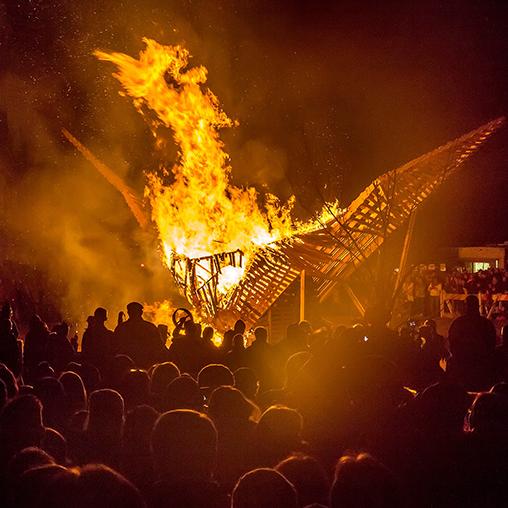 2015 Phoenixville Firebird!