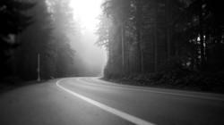 LD_Snaps_BW_S_Road
