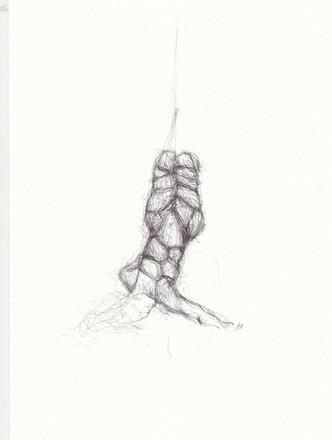 Drawn to rope oct 2020 8.jpeg