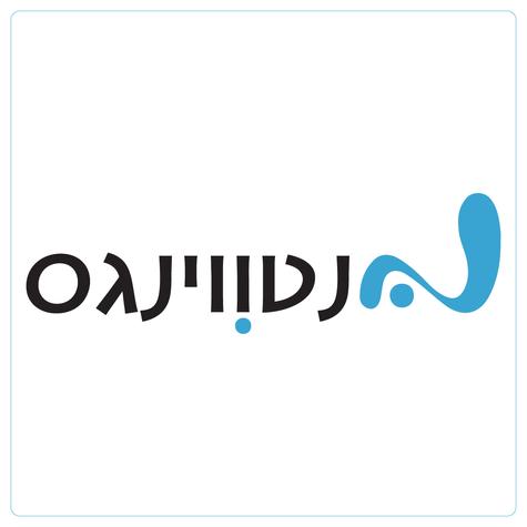 netwings heb. logo