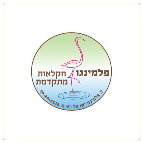 עיצוב לוגו פלמינגו חקלאות מתקדמת